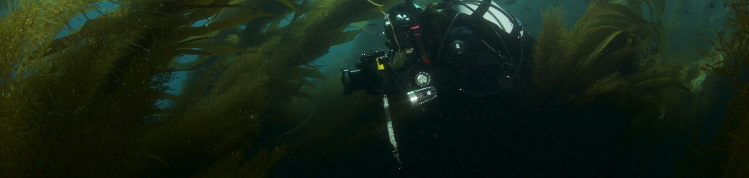 Fullface Los Angeles Scuba Diving At Hollywood Divers
