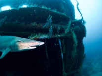 Aeolus was a Cable Layer and is now an Artificial Reef
